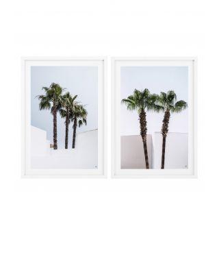 Impresiones Palm Trees (set de 2)