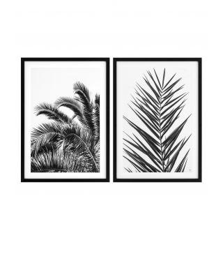 Impresiones Palm Leaves (set de 2)