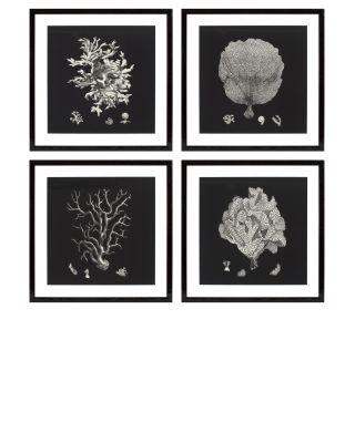 Impresiones artísticas Black & Tan Corals (set de 4)