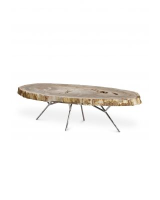Mesa de centro Barrymore de madera petrificada clara