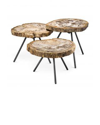 Juego de 3 mesas de centro de madera fosilizada de intervalo claro De Soto