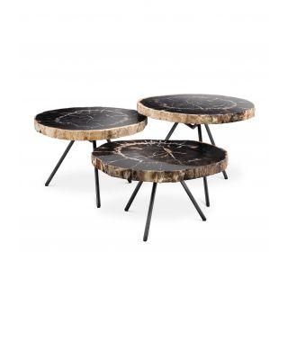 Juego de tres mesas de centro de madera fosilizada De Soto